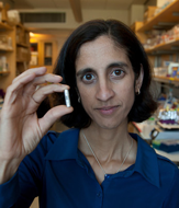 Image - Tejal Desai: Micro- and Nanotechnologies for Therapeutic Delivery