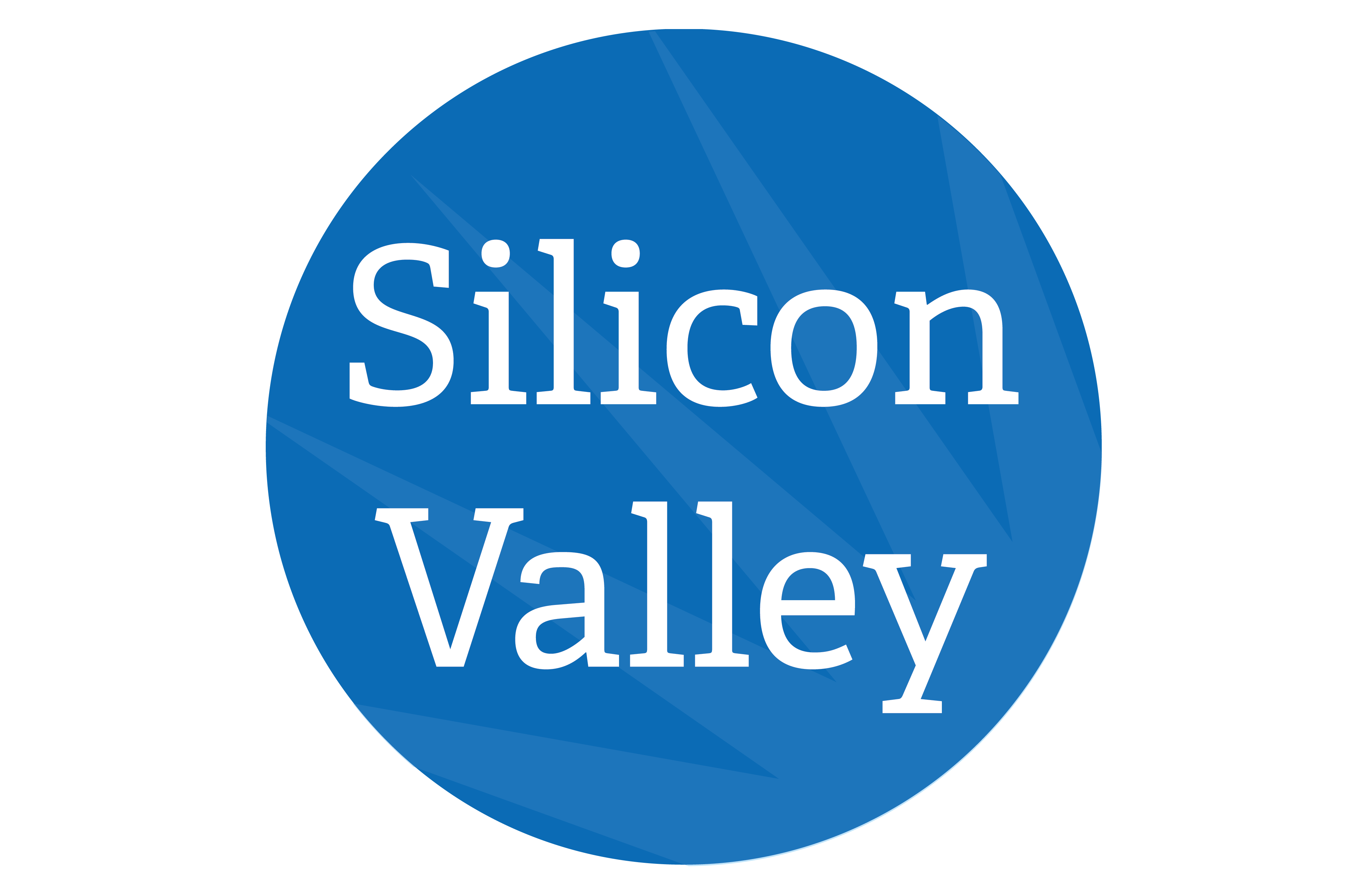 Silicon Valley Programs