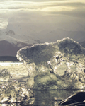 Image - Arctic Melting and Rising
