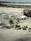 Image - Beyond Plastic