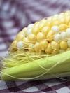 Image - GMOs: Necessary in a Hot and Crowded World?